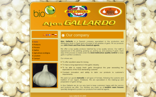 Access ajosgallardo.com using Hola Unblocker web proxy