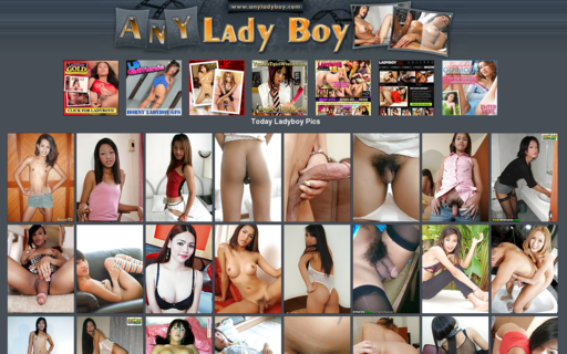Access anyladyboy.com using Hola Unblocker web proxy