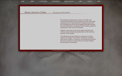 Access brionymorrow-cribbs.com using Hola Unblocker web proxy