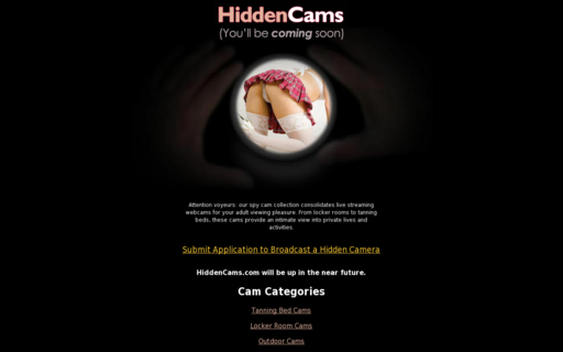 Access hiddencams.com using Hola Unblocker web proxy