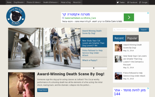Access ilovemydogsomuch.com using Hola Unblocker web proxy