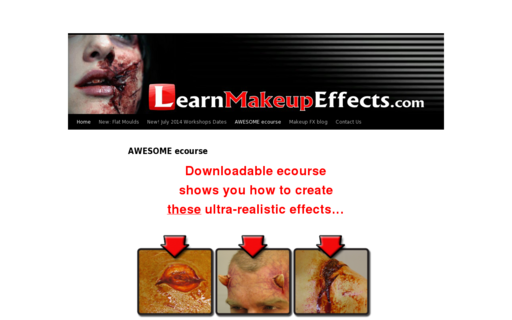 Access learnmakeupeffects.com using Hola Unblocker web proxy