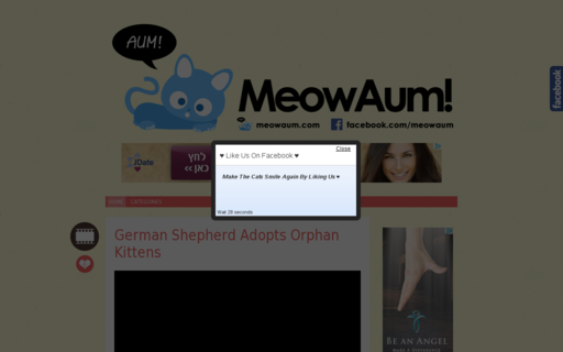 Access meowaum.com using Hola Unblocker web proxy