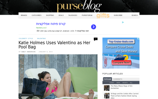 Access purseblog.com using Hola Unblocker web proxy