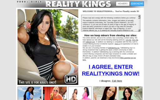Access realitykings.com using Hola Unblocker web proxy