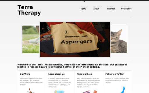 Access terratherapy.org using Hola Unblocker web proxy