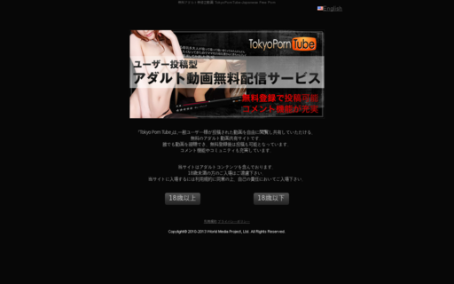 Access tokyo-porn-tube.com using Hola Unblocker web proxy