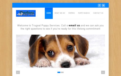 Access trugoalpuppyservices.com using Hola Unblocker web proxy